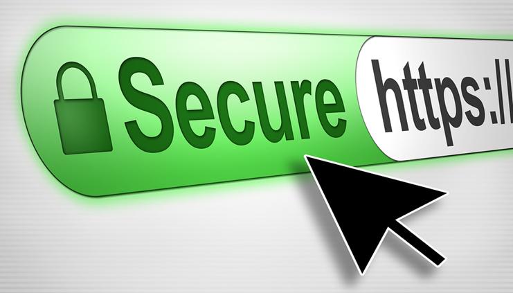 SSL/ TLS Protected Websites